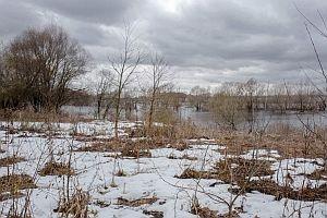 Ранняя весна на Рязанских просторах в фотографиях митрополита Марка